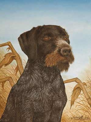 Carl Melichar Gun Dog Art