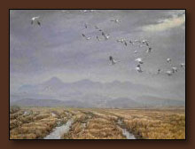 Robert Bateman Across the Sky Art Print